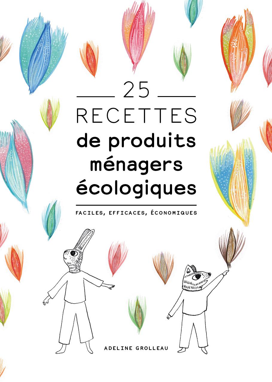 livre recettes produits d'entretien naturels