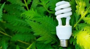 Drawbacks to energy efficiency, by specialists Efficiency 300x164