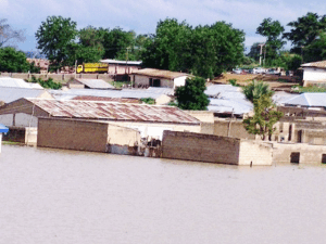Many die, 250 villages inundated as Cameroonian dam floods Nigerian territory Adamawa 1 300x225