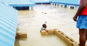 Features, remedies to Benue flood disaster Flood1