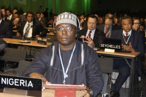 Salisu Dahiru, Head of Nigeria's UN-REDD Programme  Nigeria bags second REDD+ programme funding Salisu COP 300x200