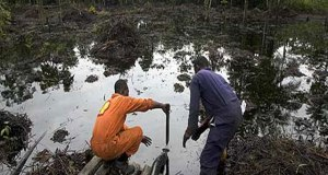 Niger Delta  Video: Black Tide in Niger Delta 13514