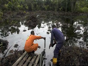 Oil pollution in the Niger Delta. Photo credit: longbaby.com  Knocks, praises greet oil discovery in Lagos 13514 300x225