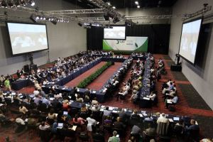The GEF Assembly  UN to tackle Nigeria desertification GEF 300x200