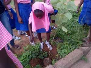 School Tree Palnting 3