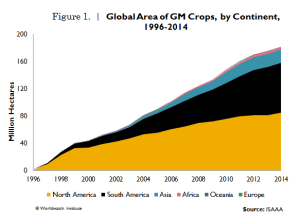 GM_crops  GM crops industry booming, says study GM crops 300x218