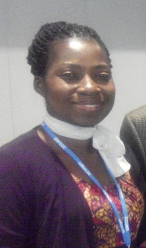 Dr Erimma Orie  Our stand on COP 21, by Erimma Orie Erimma Orie e1435698659404