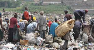 scavenging  'The real waste managers' scavenging