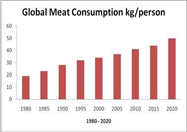 Global meat production has more than quadrupled in the last half century to over 308 million tons in 2013, bringing with it considerable environmental and health costs due to its large-scale draw on water, feedgrains, antibiotics, and grazing land