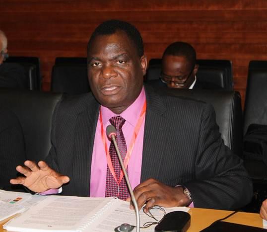 Prof. Aggrey Ambali. Photo credit: nepad.org  NEPAD to support Togo on Biosafety Regulatory Frameworks Prof