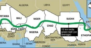 Great Green Wall  Great Green Wall tops UN actions supporting SDGs, G20 agenda green wall