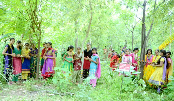 Over the course of the past six years, a quarter of a million trees have been planted in Piplantri  Indian village plants 111 trees every time a girl is born Trees