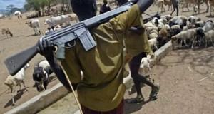 Fulani herdsmen  Cattle, bloodshed, hunger and climate change Armed Fulani herdsmen