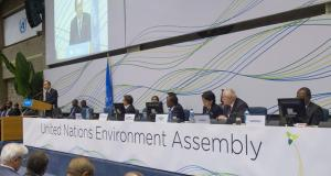 United Nations Environment Assembly