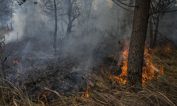 Indonesia  Air pollution hits hazardous levels in Malaysia as forest fires rage Indonesia