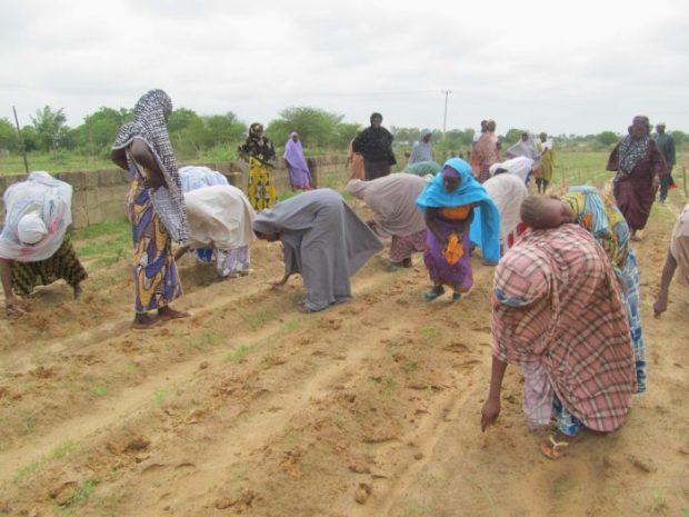 Female smallholder farmers