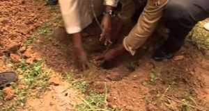 Salamatu Afforestation and Communities