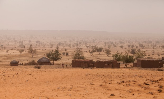 Desertification  Combating desertification in Nigeria: Lessons from Ankara Picture1 1024x618