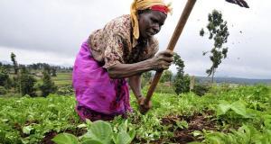 woman-farmer
