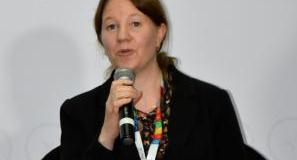 Dr. Sara Brosché  Lead-contaminated paints sold in developing regions, report finds Sara Brosche   at UNEA 2 side event 0