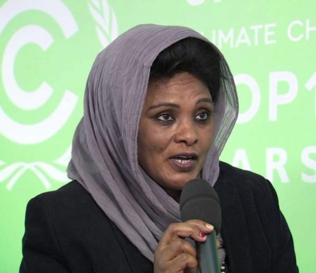 Balgis Osman Elasha of the African Development Bank believes that the continent could not benefit from the CDM because it was caught up in the capacity building mode while others were taking action