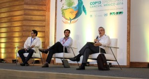 Mexico  Ministers commit to integrate biodiversity into key economic sectors COP 13