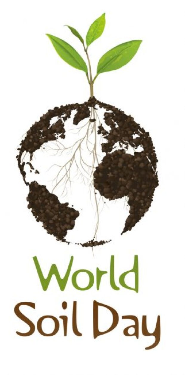 Logo of the World Soil Day (WSD) 2016   World Soil Day: Healthy soils critical for climate action – Ban Ki-moon wsdlogo upd en e1480949153159