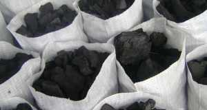 Charcoal  Charcoal: To use, or not to use? Charcoal