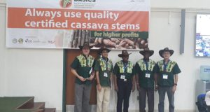 IITA-Cassava  Economically sustainable seed businesses to transform cassava production L R Lawrence Kent Hemant Nitukkar Folusho Olaniyan Alfred Dixon and Graham Thiele e1491411331828