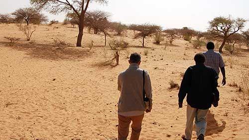 Desertification-Nigeria