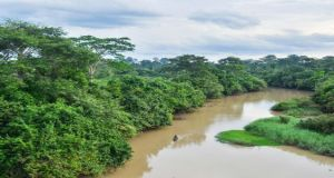 Comoé National Park  Côte d'Ivoire national park taken off World Heritage 'danger list' Como   National Park