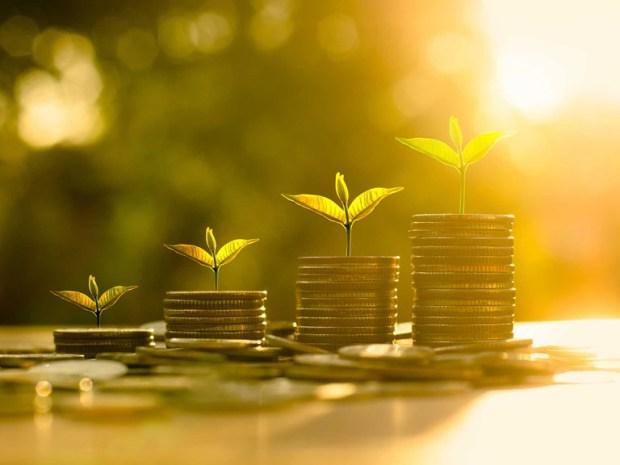 Zenith Bank green banking