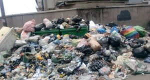 Heaps of refuse on a Lagos feeder road