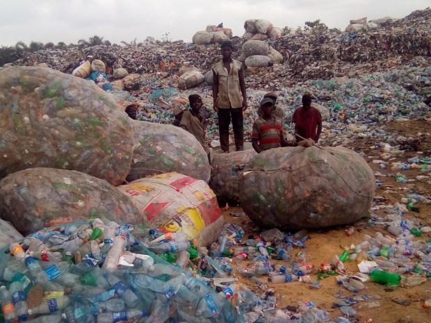 Plastic bottle scavengers
