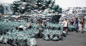 Somalia charcoal trade