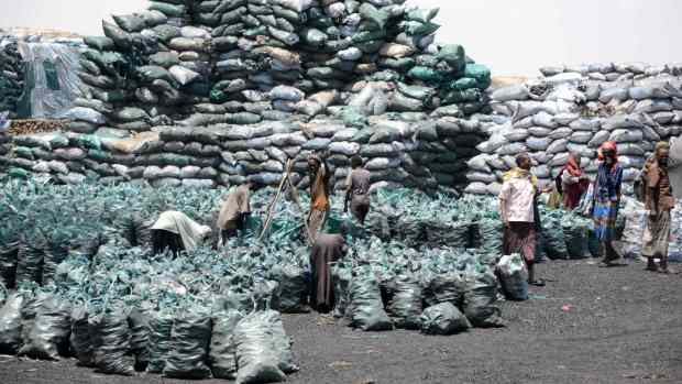 Somalia charcoal trade  Charcoal business thriving in north-west despite desert encroachment Somalia charcoal trade 1024x576