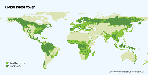 Global Forest Cover  Global tree cover increasing, study finds Global Forest Cover