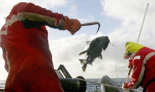 Fish ban