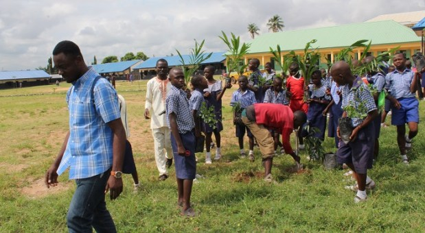 Tree planting  Group advocates stronger laws to check indiscriminate felling of trees Volunteers and pupils of LGEA Primary School Wurukum Makurdi Benue State planting trees during the trees planting event at the school on 19th October 2018