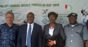 Pangolin Day