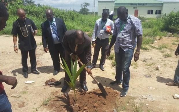 Alex Ekwueme Varsity  Alex Ekwueme varsity greens campus with 20,000 endangered plant varieties Ekwueme Varsity
