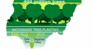 Greening Nigeria campaign  Environmentalists to plant 400m trees under 'Greening Nigeria' campaign IMG 20190731 WA0015