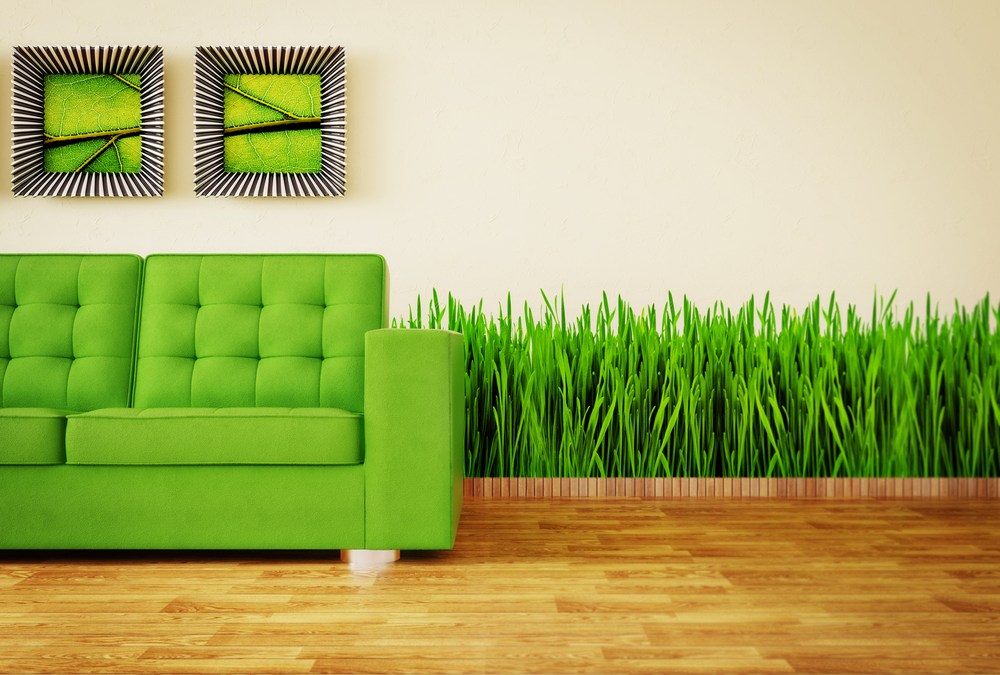 Best Tips for Living Green