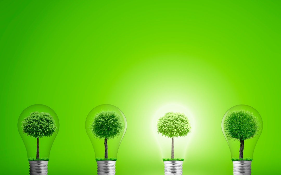KKR Green Portfolio: Responsible Investing