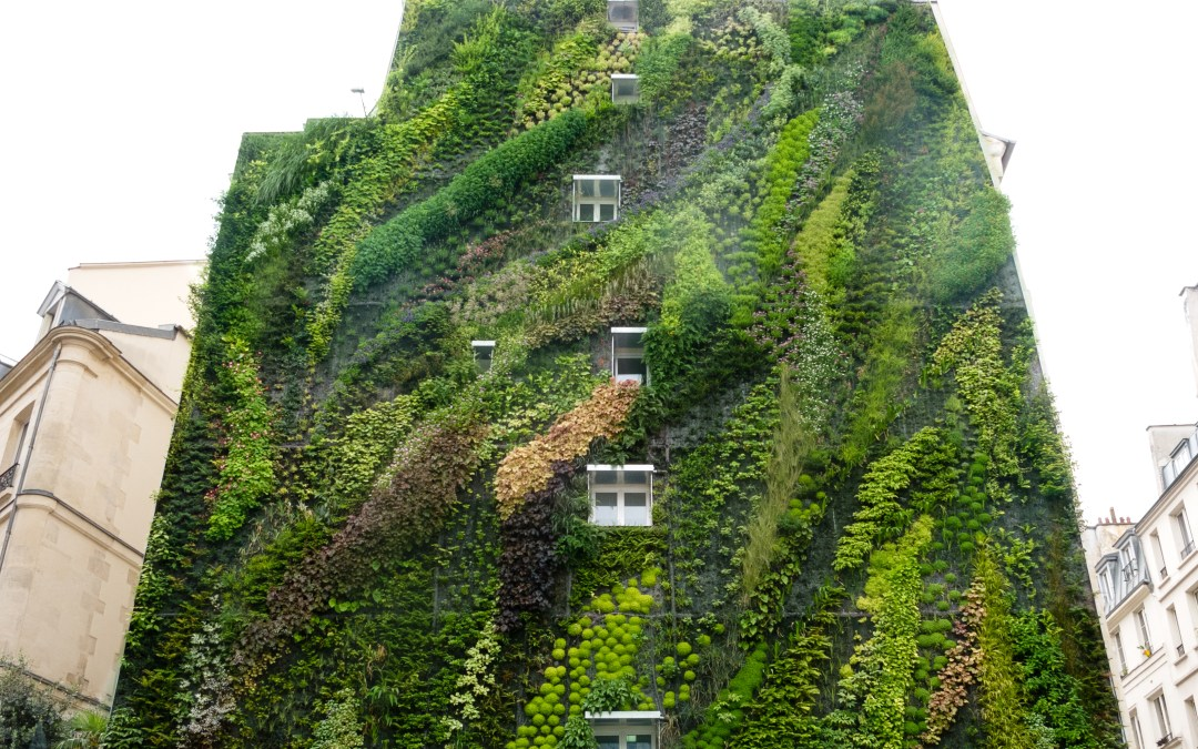 This Hanging Garden Will Blow Your Mind