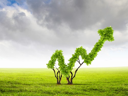 Big business is learning that green initiatives are good for their bottom line.