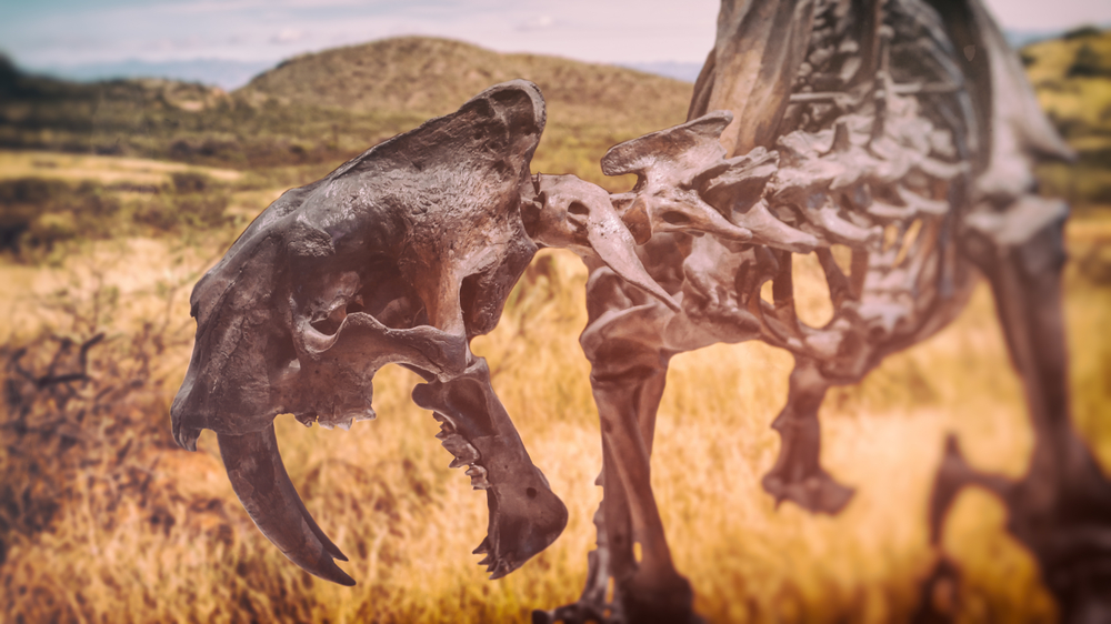 The Ecological Possibilities of De-Extinction