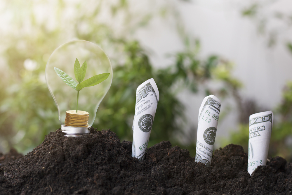ESG Investments Are on the Rise Amid Climate Change Concerns