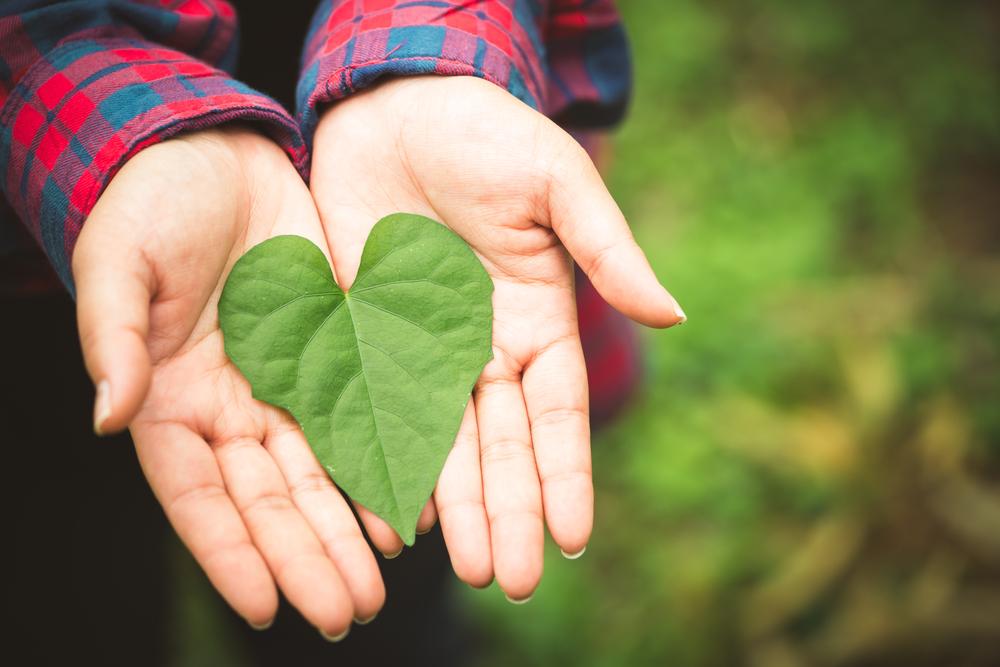 4 Green New Year's Resolutions for 2018