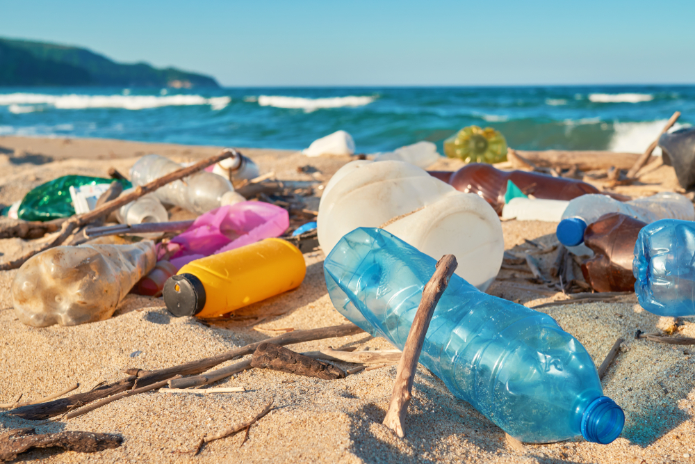 Research Team Figures Out a Way of Upcycling Plastic